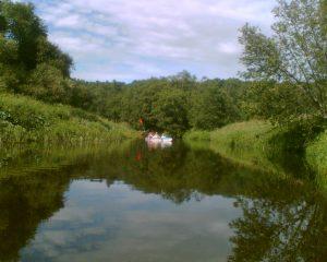Plaukimas baidarėmis Dubysa