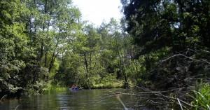 Plaukimas-Baidarėmis-Šalčios-Upe-Vasarą