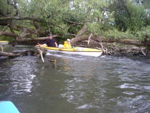 Vasarinis-Plaukimas-Verknės-Upe-Baidarių-Nuoma-Robis